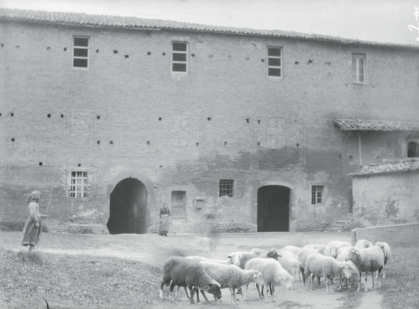 [Abbey of Monteoliveto Maggiore (Italy), courtyard with women and sheep]